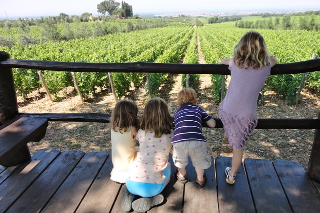 Young travelers at a vineyard, Tuscany