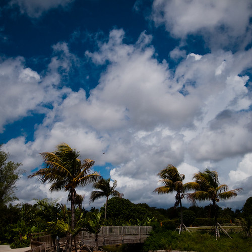 South West Dade Skies, Redlands Fruit and Spice Park