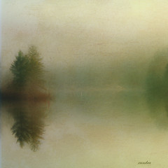 .... fog on the lake ....