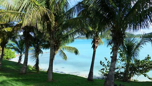 Cocobay Resort Grounds, Antigua