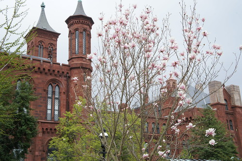 Smithsonian Castle Side View
