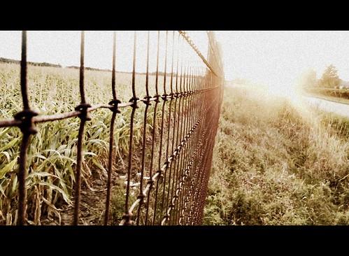 sunset sky sun ontario canada blur metal rural fence dof bokeh samsung niagara explore master fields letterbox stcatharines sunrays picnik tqm samsungmaster trolledproud fencefriday samsunggalaxys paulboudreauphotography