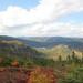 La biosphère de Charlevoix en automne