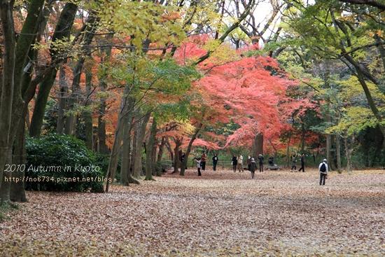 20101207_KyotoWithMoFei_1413 f