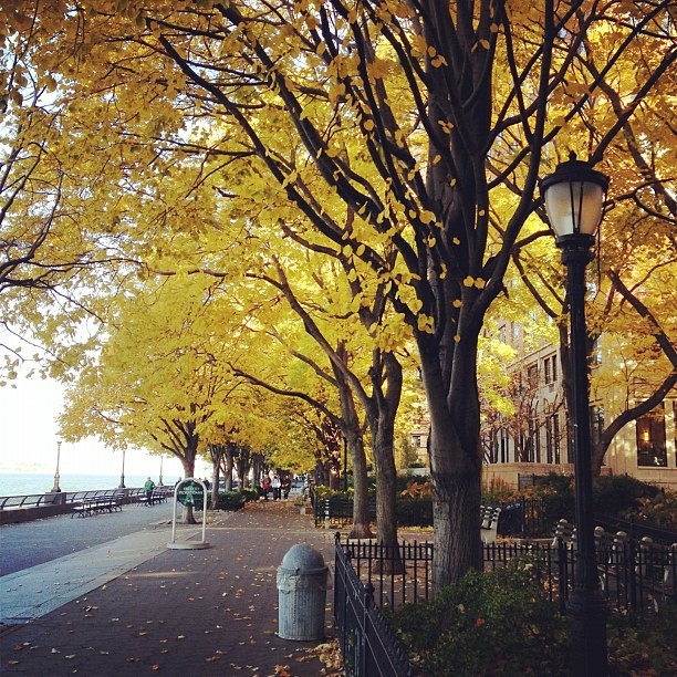 Enjoying a crisp fall NYC morning stroll down the Hudson river