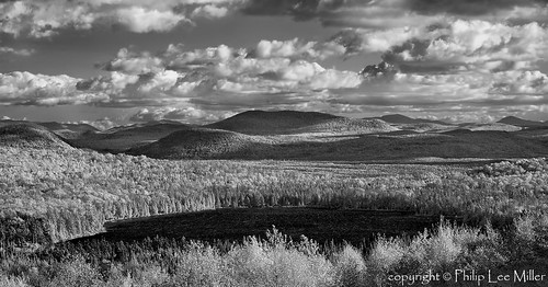 blackandwhite bw nature landscape vermont fallfoliage rollinghills northeastkingdom mapletrees nek cumulusclouds silverefex birdconservancy silvioocontenationalfishandwildliferefuge lewispondoverlook