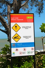 Palm Cove Jetty_9