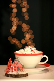 Hot Cocoa with sprinkles and a side of winter village....