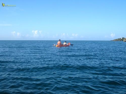 Kayaking Fun Roatan Honduras