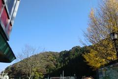 高尾山20111124-001