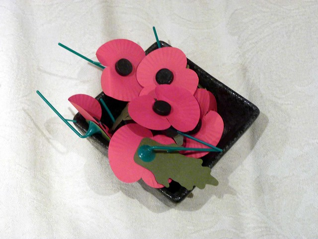 Poppy collectiong