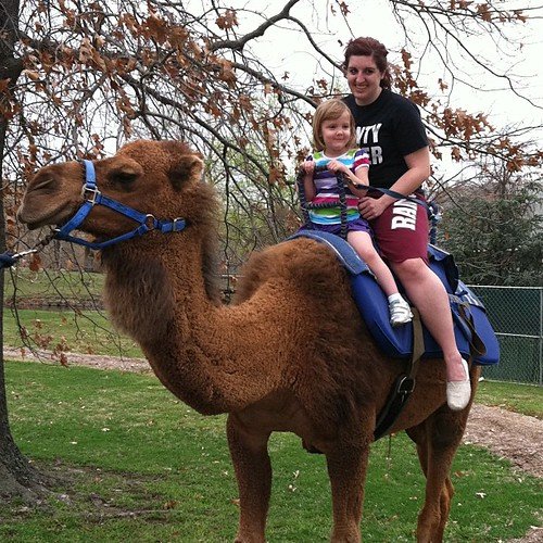 77:365 Camel ride with cousin Ashleigh at Tulsa Zoo