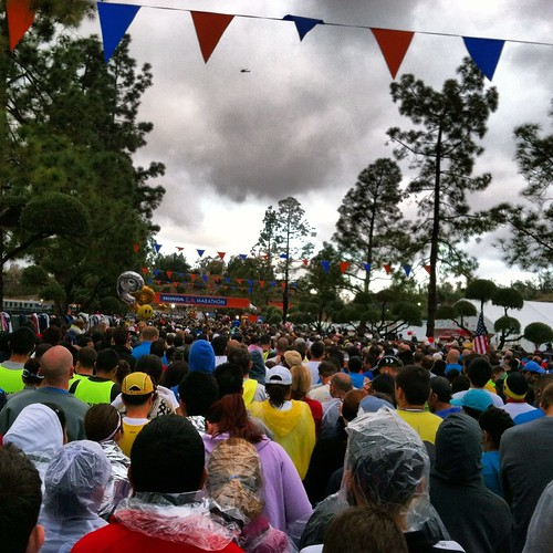 Starting line of 2012 LA Marathon