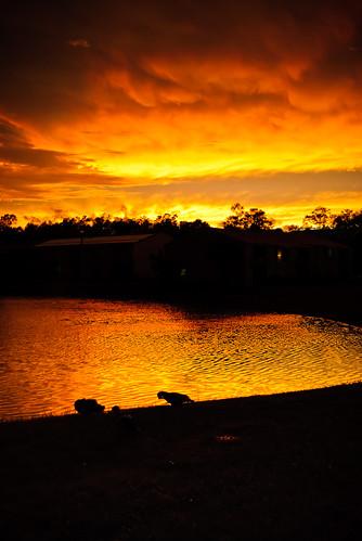 sunset sky usa lake storm reflection silhouette backlight clouds us unitedstates florida gainesville drama stoneridge josegarrido sw34thst
