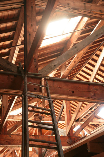 Into The Rafters by peterkelly