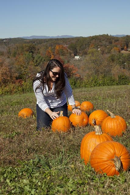 Pet ze pumpkin