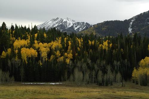 autumn mountains fall rural landscape utah scenic meadow foliage aspens