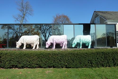 Samuel Buri's Des Vaches: Mo, Ni, Que (1971-1976)