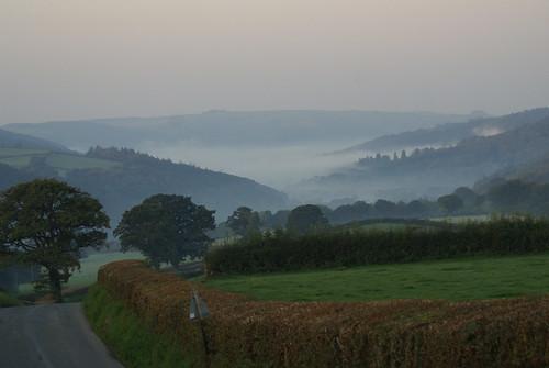 road trees sky mist green field grass sign fog grey post hills hedge