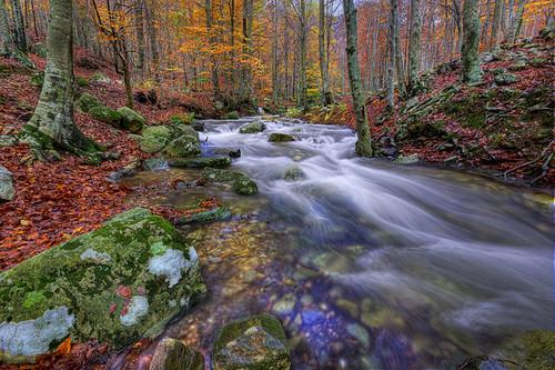santa autumn nature landscape nikon sigma catalonia catalunya fe 1020 hdr aigua tardor riu montseny catalogne d90 riera christianalicia