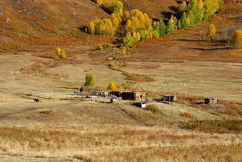 china travel autumn canon landscape xinjiang naturepoetry xiaomeisun