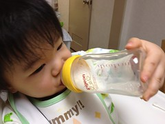 今日の片手哺乳瓶飲みとらちゃん(2011/11/19)