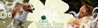 vale_do_trevo_banner