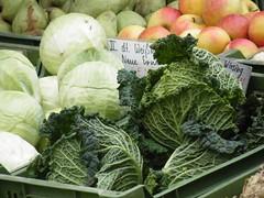 collard greens(0.0), cabbage(1.0), vegetable(1.0), leaf vegetable(1.0), produce(1.0), food(1.0),