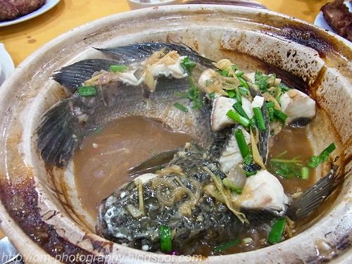 claypot haruan fish snakehead R0017079 copy