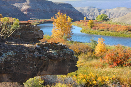 color fall river colorado conservation area gorge federal gunnison