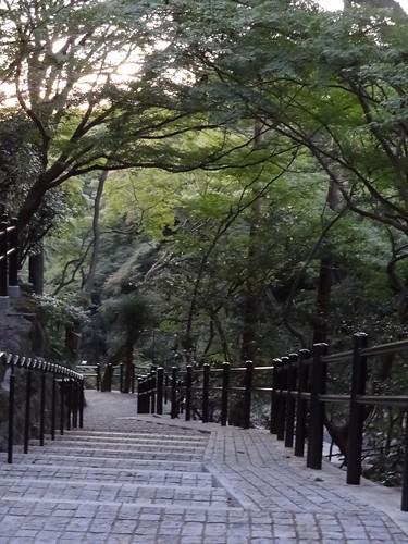 Kiyomizudera - Kyoto by girl from finito