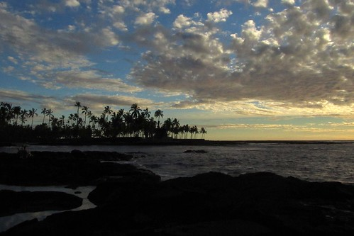 ocean sunset sea sky rock clouds palms hawaii coast nationalpark sundown horizon palmtrees pacificocean shore bigisland nationalparkservice seashore kona fackler heiau lavarock puuhonuaohonaunau puuhonuaohonaunaunationalhistoricalpark hawaiiisland honaunaubay abigfave barryfackler barronfackler hawaiicountypolynesia