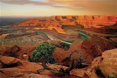 Canyon River Dental