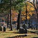 Small photo of Sleepy Hollow Cemetery in Concord, MA