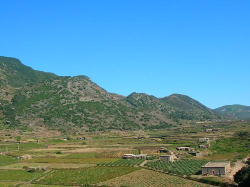 Line of vents along Montagna Grande, Pantelleria
