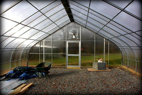 The Interior of the Bartram Greenhouse at Avon Grove Charter