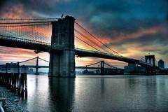 Brooklyn Bridge Dawn, Rosy Fingered
