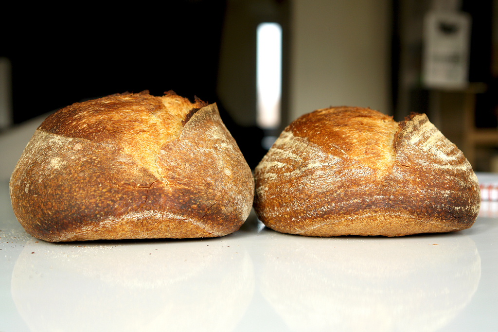 6376568935 e5de86d1b9 b San Francisco Sourdough with a twist (I)