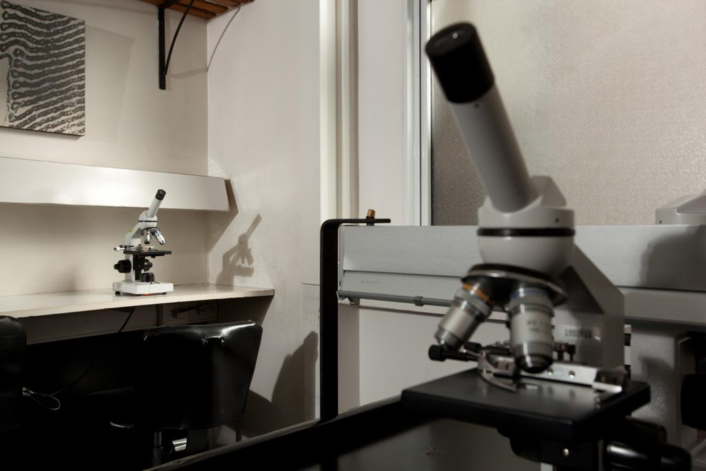 Laboratorio Histología