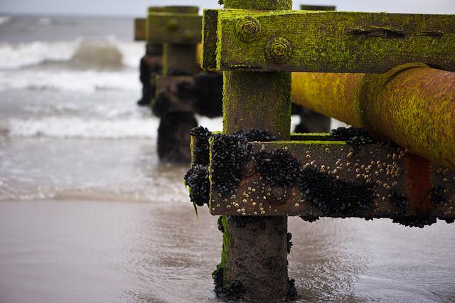 026 beach