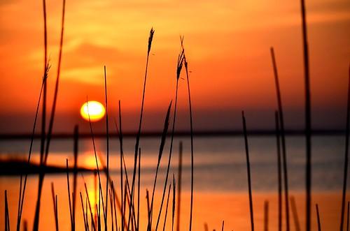 sunset sea usa newyork beach water landscape fun scene longisland dblringexcellence tplringexcellence nikond5100 eltringexcellence