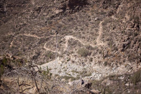 Switchbacks on the Sabino Canyon Trail