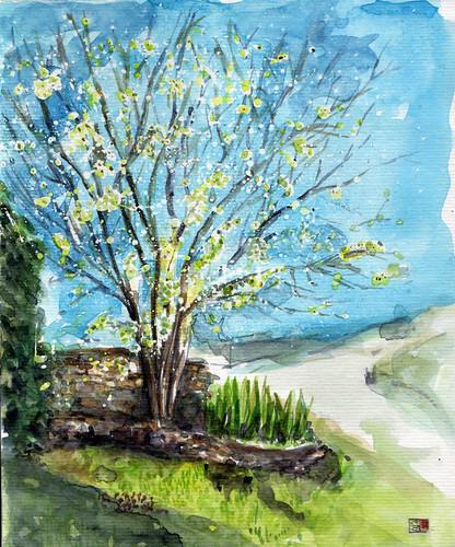 Hé ! c'est le printemps by Stéphane Feray