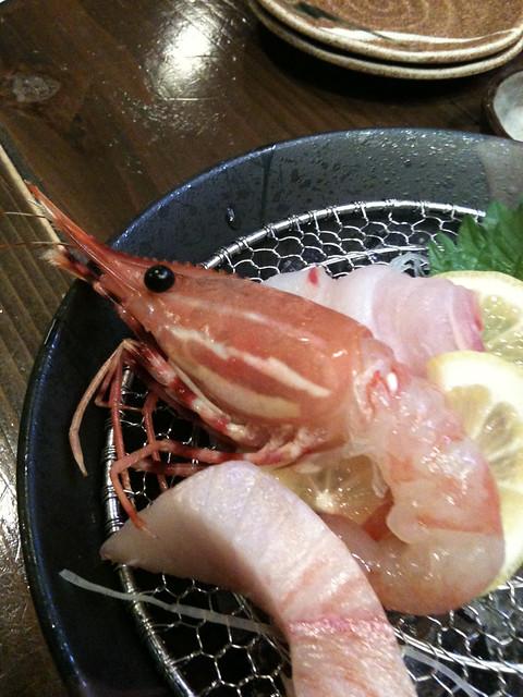 (ぼたんえび しょうゆなくても おいしいよ) 松江にて刺身盛つつきながら詠む一句←バカ