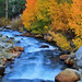 Classic Bishop Creek in the Fall