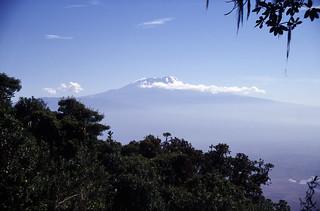 Best of Kilimanjaro