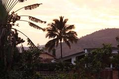 Bild aus Bujumbura (Burundi)