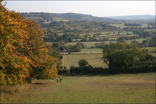 View of the North Downs near Shoreham