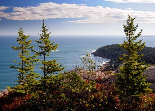 ocean trees nature coast hiking maine scenic coastal atlanticocean acadia mountdesertisland mdi acadianationalpark downeast otterpoint gorhammountain gorhammountaintrail