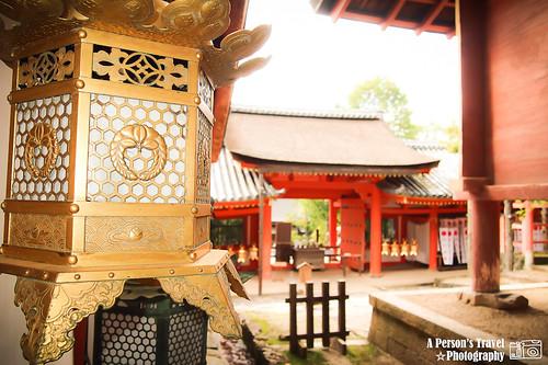 2011Kyoto_Japan_ChapThirteen_7